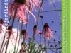 jardin_lievre_001